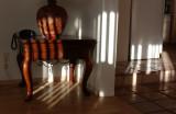 afternoon light 017