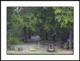 Plenty of Rain