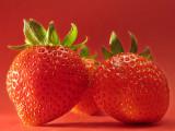 The Berries Three *