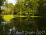 Bramshill small lake
