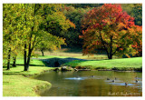 Autumn at Stone Ridge Pond