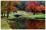 Autumn Reflections at Foxbriar Pond )