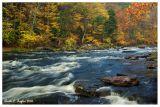 Autumn Along Tohickon Creek  (To-hick-han) Lenape word meaning Deer Bone Creek