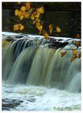 Tohickon Creek Falls