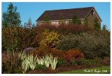 Autumn at Lindenhill Farm