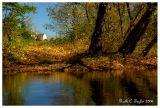 Autumn Morning Along the Creek