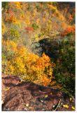 Autumn Above Tohickon Creek