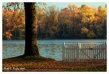 Autumn Along the Delaware River