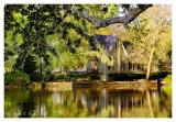 Spring Morning at Afton Pond