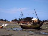 Fishingboat fallen dry