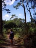 Strolling along