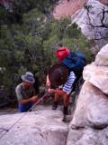 Bluff descent