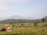 Morning panorama