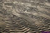 Playa de San Antonio, Busturia Al lado de Pedernales