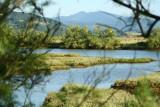Marismas de la Ría de Guenica en Busturia