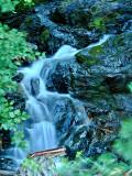 Evergreen Mountain, WA