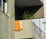 orange towel.JPG