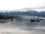 Deep Bay Vancouver Island.jpg