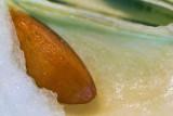 Apple Seed
