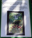 Jardin botanique, Deshaies - Guadeloupe