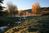 Fall-Pond-2A.jpg