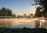 Duck-Pond 4.jpg