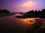 Marsh Solitude.jpg