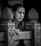 Monk at Paro Dzong