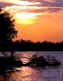 Sunset on the Zambizi River