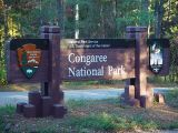 THIS IS A PARK YOU DON'T WANT TO MISS-CONGAREE NATIONAL PARK