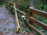 Bridge damage