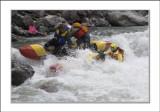 passing Bye Fatherland rapid (4 class)