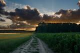 pursuit of setting sun
