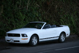 Our Mustang convertible rent-a-car