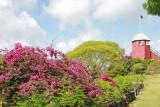Gun Hill Signal Station on Barbados