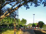 The park / El parque