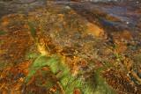 Tek river
