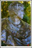 profil mousse