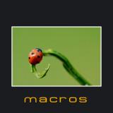 Cover macros.jpg