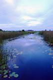 Blue Sky Pond.jpg
