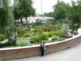 Flowers in Tivoli Gardens