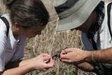 Laura and Matt examine the sparrow.