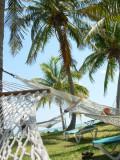 Bahama Vacatiion