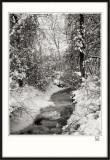 Frozen Brook