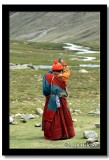 Pilgrim Prostraiting through the Kailash Kora, Tibet
