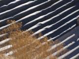 Corregated Metal Dune Death Valley, California  February 2007