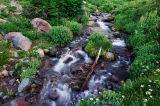 Elk Cove Creek, August 2006 #5