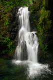 Ron Falls