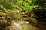 Henline Creek study #2