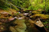 Henline Creek study #3b